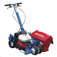 Rental store for BED EDGER, 6HP, STEERABLE in Cleveland OH