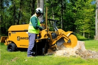 Rental store for STUMP GRINDER, 70HP, RAYCO RG70X, DIESEL in Cleveland OH